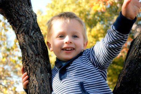 Micah on his tree at three
